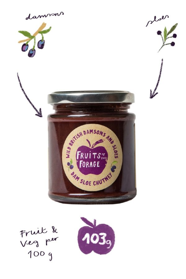 Dam sloe chutney from Fruits of the Forage